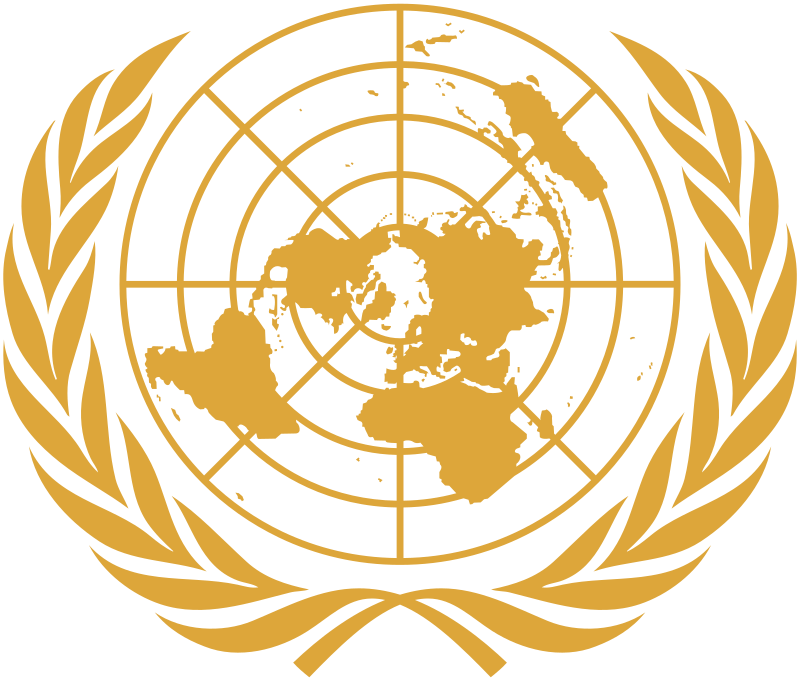 United Nations Security Council –UNSC