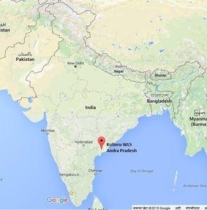 kolleru lake in india map Everything About Kolleru Lake Onestop Upsc kolleru lake in india map